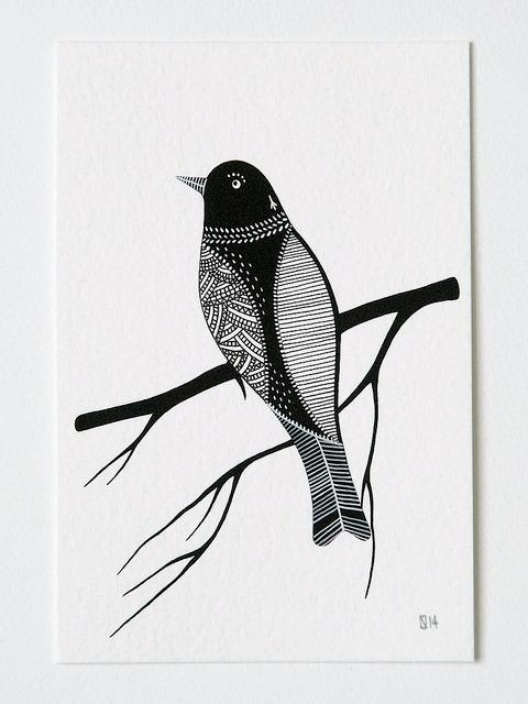 BirdofStrength1-NatashaNewton-640