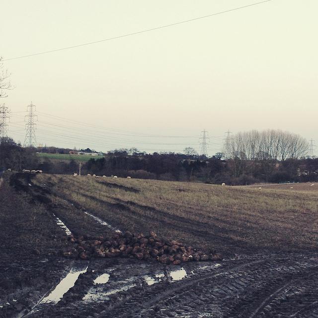 Suffolk-February-6-640